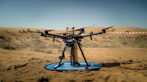 10,000 seeds of Ghaf trees planted in the UAE using drones