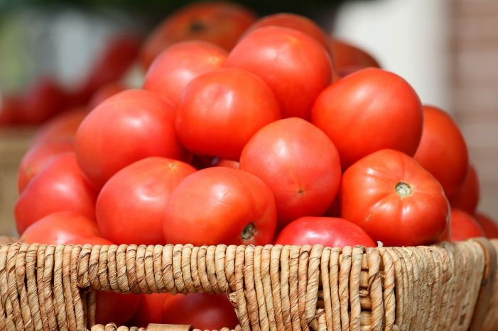 Festival reenacts historic moment N.J. learned tomatoes were not poisonous