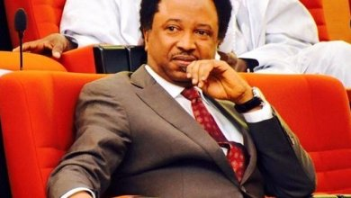 Photo of Alleged fraud: Shehu Sani returned my $25,000, begged for forgiveness – witness