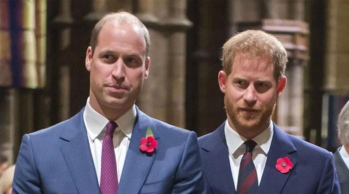Experts unearth the reason Prince Harry, William will walk separately for Prince Philip's funeral