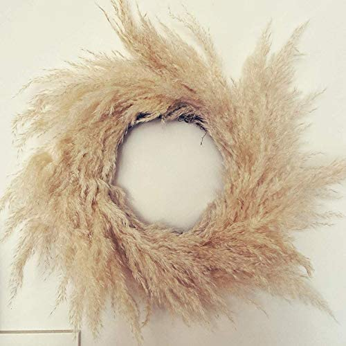 sdfsa Handmade Pampas Grassland Wreath Decoration Wall Pendant Dried Flowers Crafts Office Christmas Autumn Wedding Decoration For Flower Arrangements Wedding Home Decor