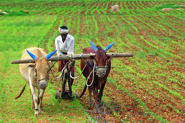 Farmer Law In India