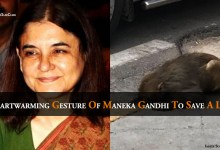 Heartwarming Gesture of Maneka Gandhi To Save A Life