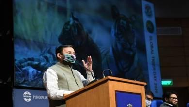 Javadekar releases Tiger Census Report