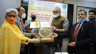 The Animal Welfare Board of India Awards Dedicated for Animal Welfare and Protection-2021 Held on Auspicious Day of Vasant Panchami at New Delhi