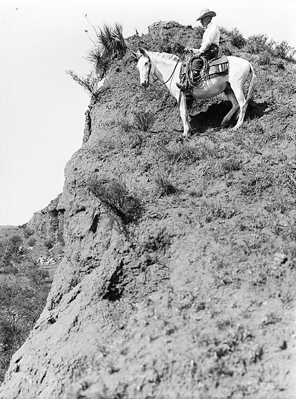 Hillside Wrangler