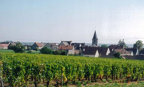 創業者夫妻が訪れたフランスの風景