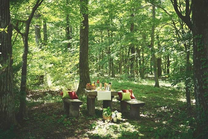 森の中のベンチ