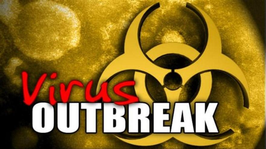 Pet rats in Illinois, Wisconsin linked to Seoul virus outbreak ...