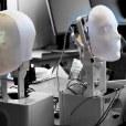 Exclusive: Social Robotics Company Furhat Closes $2.5M