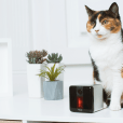 Electronics Startup Petcube Brings In $10 Million