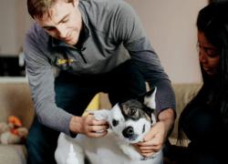 Vet app Fuzzy Pet Health Brings In $4.5 Million