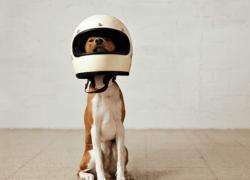 Stardog Raises Additional $3M, Closing $9M Series A Round