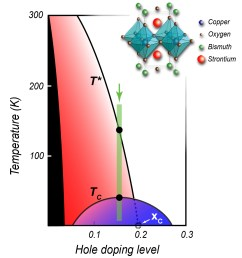 in this phase diagram common to many cuprate superconductors the insulating phase typical of undoped [ 1106 x 1238 Pixel ]