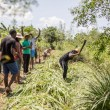 """Participants to an """"agro-bootcamp"""", aimed at preparing young people for a future sustainably working the land, are seen cheer as a colleague uses a machete on a plant"""