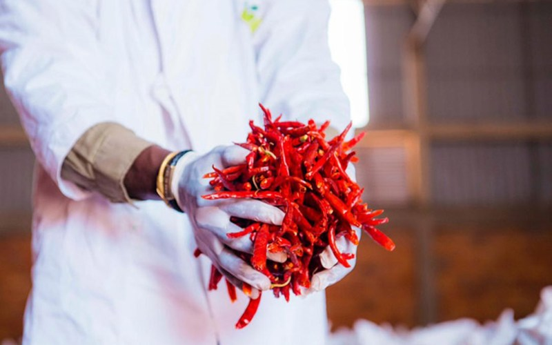 Rwanda Exports First Chilli Consignment to China (News Central TV)