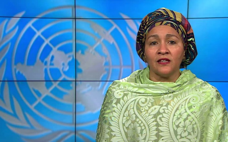 Amina Mohammed served as Nigeria's Minister of Environment from 2015 to 2016, as well as the special adviser to Ban Ki-moon on post-2015 development planning, which focused on the 2030 agenda for sustainable development goals. She is a diplomat serving as the fifth Deputy Secretary-General of the United Nations.