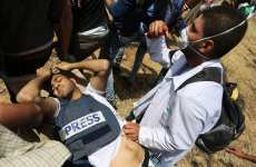 Image result for IDF crimes