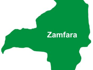 Zamfara Speaker urges assembly staff to be dedicated