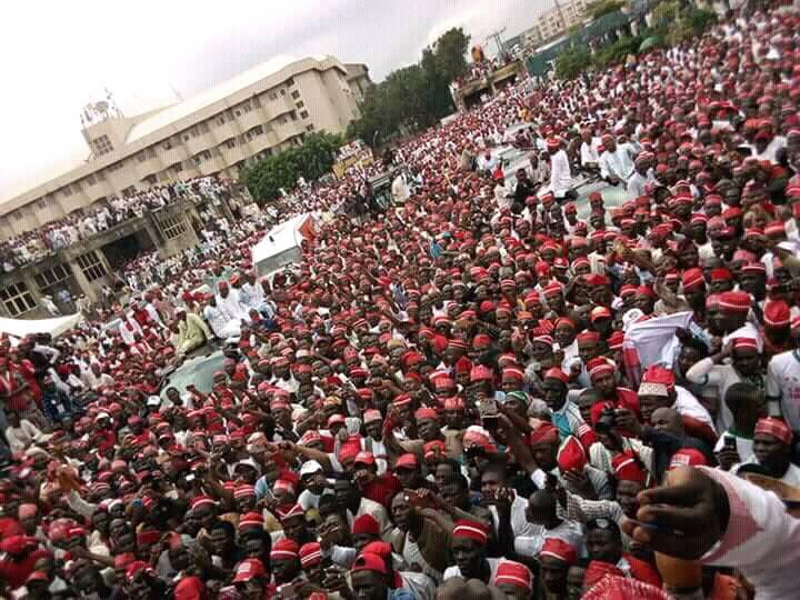 Image result for Kwankwaso declares