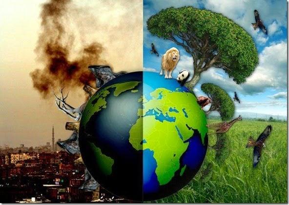 O Planeta Terra pode estar passando pela sexta Grande Extinção