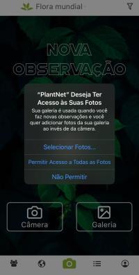 App para identificar plantas por foto