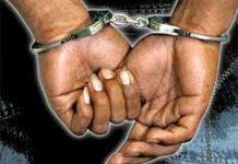 Wpid Handcuff