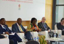 Mrs Elisabeth Ofosu-Adjare FDI