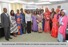 ECOWAS Experts