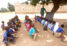 school Under-Trees