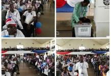 NPP Volta Elections