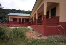 botoku torve new school