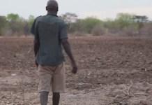 drought-hit Zimbabweans