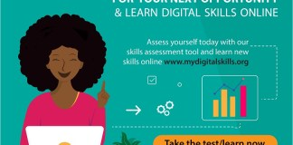 Digital Skills Assessment Tool