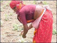 Mujer trabajando en el campo.