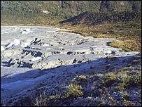 Antiguo sitio del lago. (Foto cortes�a CONAF)