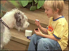 Boy and dog in Oreo advert