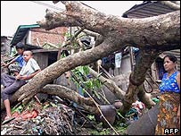 A fallen tree and damaged houses in Rangoon