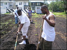 Urban farming and soil contamination in detroit rjc - Urban gardening in contaminated areas ...