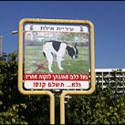 With all other 'problems' solved, Israeli officials focus on cleaning up another mess…