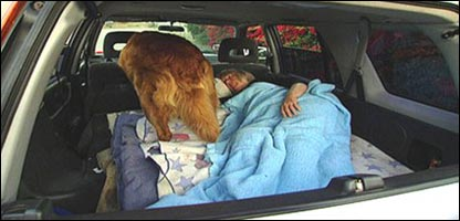 Un señora y su perro durmiendo en un auto