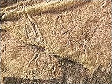 The Stirling formation fossil is at least 1.2 billion years old