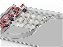 El microchip puede detectar hasta 12 proteinas que indican la presencia de enfermedades.