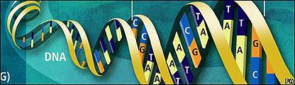 Diagrama del genóma humano