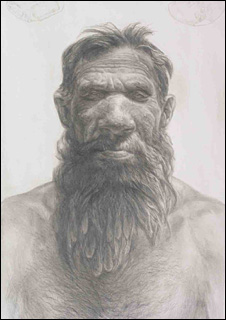 Artist's impression of Neanderthal man (Museum of Antiquities)