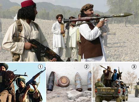 talib infographic