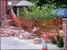 Japanese knotweed knocking down wall (Dick Shaw)