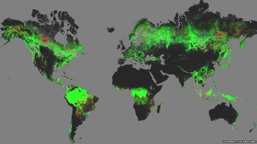 Global map of forest change