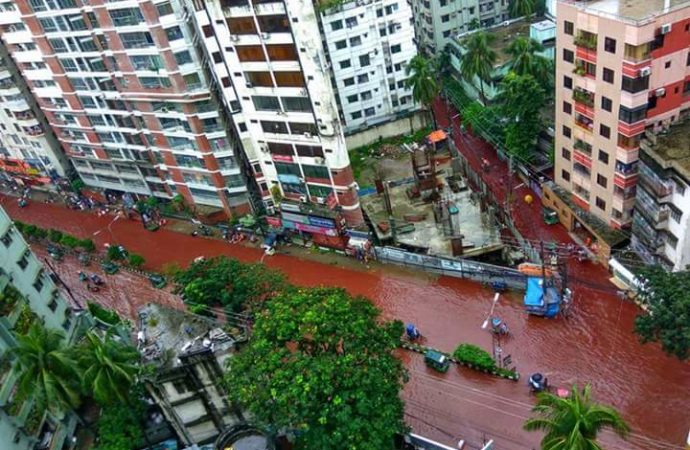 Water logging and Eid animal sacrifices combined to create rivers of blood in Bangladesh's capital city