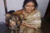 महिला तेंदुए के जबड़े से छुड़ा लाई कुत्ते को, जानिए कैसे